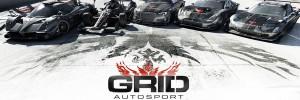 GRID-Autosport banniere